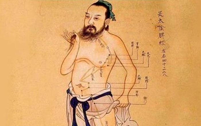 Shiatsu méridiens