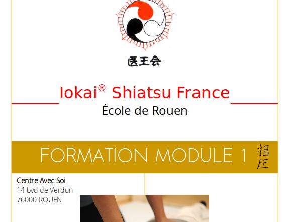 formation iokai shiatsu